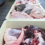 高騰しているのは牛肉だけではなく内臓も同じくで上質な内臓を食べる機会が少なくなる